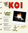 Super Simple Guide To Koi