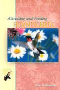 Attracting & Feeding Hummingbirds