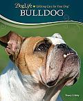 DogLife: Lifelong Care for Your Dog™||||Bulldog