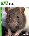Animal Planet® Pet Care Library||||Rats
