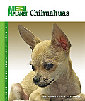 Animal Planet® Pet Care Library||||Chihuahuas