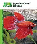 Animal Planet® Pet Care Library||||Aquarium Care of Bettas