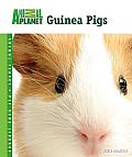 Guinea Pigs Animal Planet Pet Care Libra