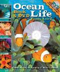 Ocean Life A To Z