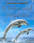 Whales & Dolphins Internet Linked