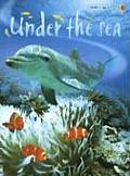 Under The Sea Level 1 Internet Refere