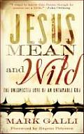Jesus Mean & Wild The Unexpected Love of an Untamable God