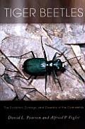 Tiger Beetles: Violence and Revelation in Paris, 1789-1945