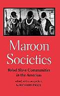 Maroon Societies: Rebel Slave Communities in the Americas Cover