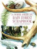 North American Rain Forest Scrapboo