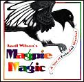 Magpie Magic A Tale Of Colorful Mischief