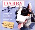 Darby The Special Order Pup
