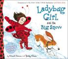 Ladybug Girl & the Big Snow