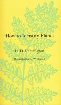 How to Identify Plants