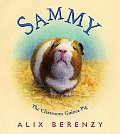 Sammy The Classroom Guinea Pig