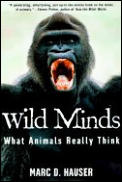 Wild Minds What Animals Really Think