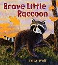 Brave Little Raccoon