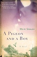 Pigeon & A Boy