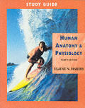 Human Anatomy & Physiology Study Guide