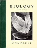 Biology 4th Edition