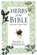 Herbs Of The Bible & How To Grow Them