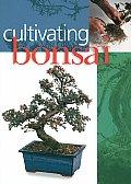 Cultivating Bonsai