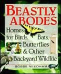 Beastly Abodes Homes For Birds Bats