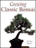 Growing Classic Bonsai