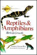 Reptiles & Amphibians Birth & Growth