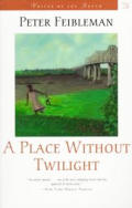 A Place Without Twilight (Voices of the South) Cover
