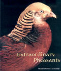 Extraordinary Pheasants