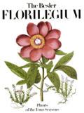 Besler Florilegium