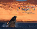 Wild Shores of Patagonia: The Valdes Peninsula and Punta Tombo