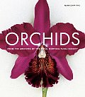 Orchids From The Archives Of The Royal H
