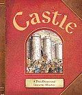 Castle: A Three-Dimensional Interactive Adventure