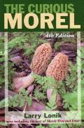 The Curious Morel