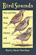 Bird Sounds How & Why Birds Sing Call