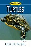 Turtles (Wild Guides)