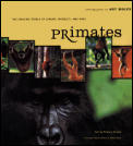 Primates the Amazing World of Lemurs Mon