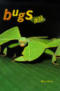 Bugs in 3-D Cover