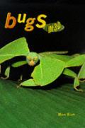 Bugs in 3-D