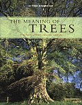 Meaning of Trees Botany History Healing Love