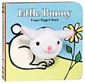 Little Bunny Finger Puppet Book With Finger Puppet