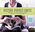 Picture Perfect Knits Step By Step Intarsia with More Than 75 Inspiring Patterns