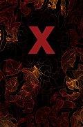 X The Erotic Treasury