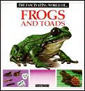 Fascinating World Of Frogs & Toads