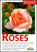 Roses Beautiful Roses For Every Garden S