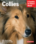 Collies How To Take Care Of Them & T