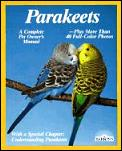 Parakeets How To Take Care Of Them & Und