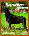 Rottweilers Everything About Purchase